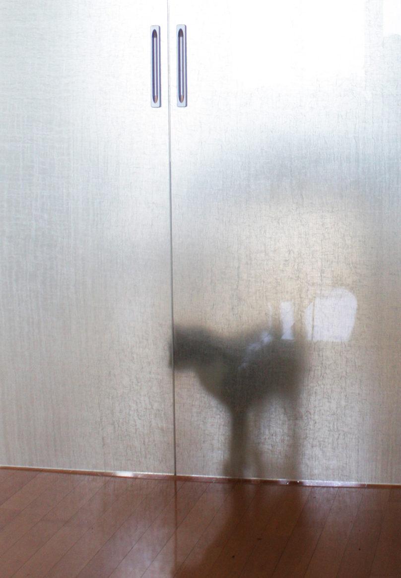 Porta scorrevole in vetro e lino divide la cucina dal living